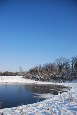 Woodland Park Pond