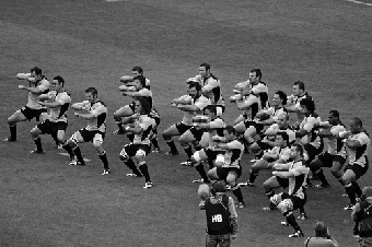 Photo of the All Blacks by Genevieve