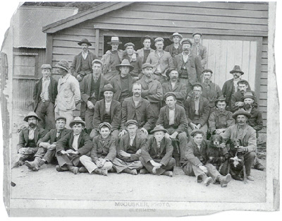 Here is the historic photo of Harry Blake working on the sheep farm in Nelson. He is in the back row, fifth from the left.