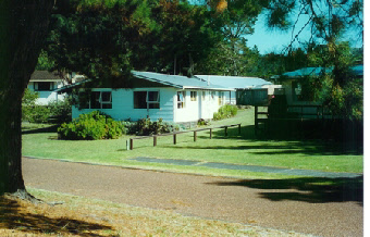 Pauanui Beach House