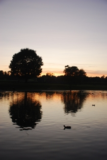 Sunset, Verulamium Park